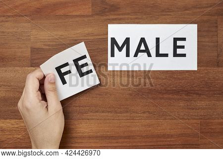 Hand Changing The Word Male Into Female Or The Opposite. Conceptual Image About Gender Identity And