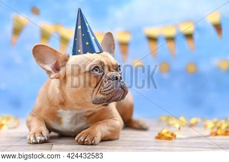 Red Fawn French Bulldog With Birthday Part Hat  In Front Of Blurry Blue Background With Garlands And