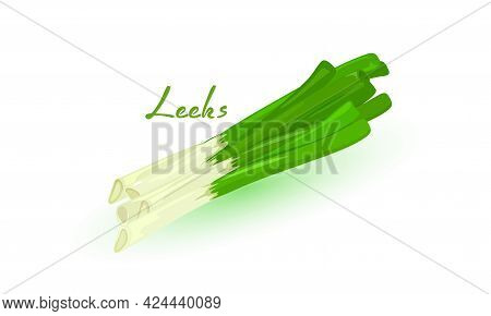 Ripe Farm Menu, Healthy Greenery, Herb And Product, Whole Leek Root. Vector Organic Healthy Food. Ve