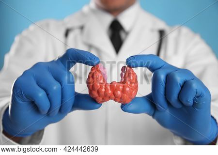 Doctor Holding Plastic Model Of Thyroid On Light Blue Background, Closeup