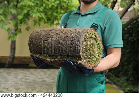 Worker Holding Rolled Grass Sod At Backyard, Closeup