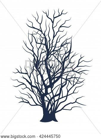 Bare Tree Without Leaves. Dark Silhouette. Beautiful. Dense Crown With Many Small Branches. Or Close
