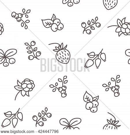 Seamless Pattern With Wild Berries. Raspberries Cowberry Blackberries And Blueberries Vector Illustr