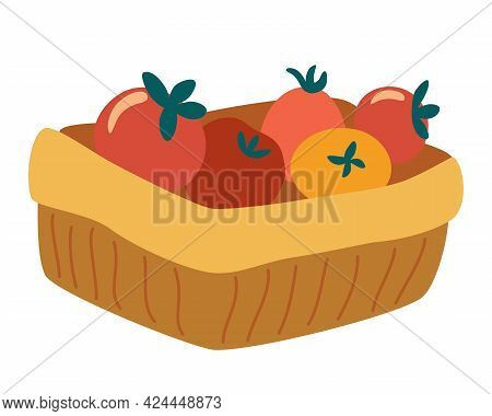 Basket Of Tomatoes. Vegetarian Nutrition Market Concept. Organic Healthy Food Harvest Delivery Packa