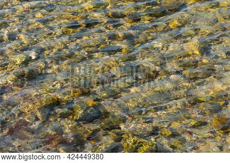 Sea Stones In Clear Sea Water. Textured Abstract Background In Neutral Beige Shades. Beautiful Rippl