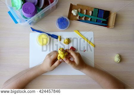 The Child Plays And Builds Figures From The Play Dough. Children's Hands With Colored Plasticine. De