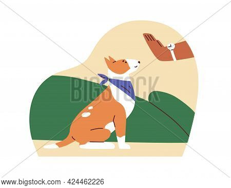 Dog Obeying Trainers Sit Command. Canine Instructors Hand Showing Signal To Trained Puppy. Cynologis