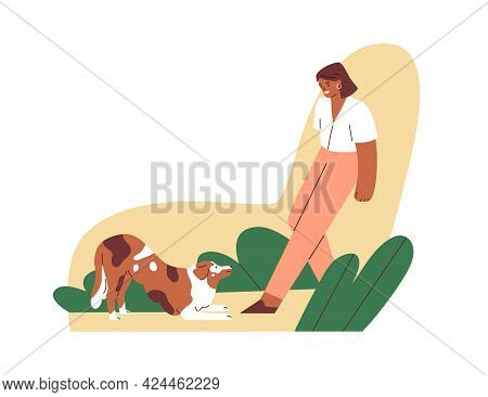 Obedient Dog Obeying Down Command Of Its Female Trainer. Pet Owner Training And Teaching Doggy. Cani