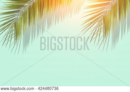 Palm Leaves Background. Tropical Palm Leaves On An Empty Colored Background. Summer, Tropics, Sun, V