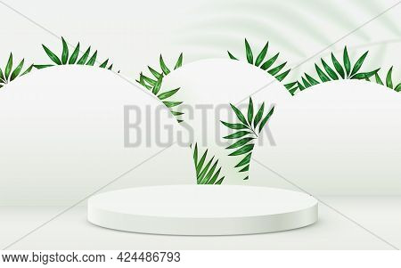 Abstract Eco Scene Background. Cylinder Podium With Leaves On White Background. Product Presentation