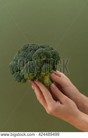 Fresh Raw Broccoli In Hand. Healthy Eating And Vegetarianism Concept.