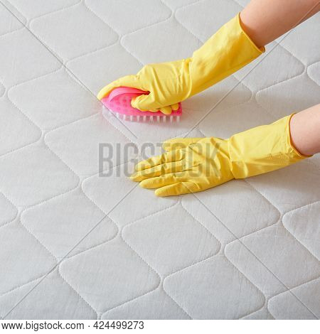 Cleaning Company Employee Hand Cleans Surface Of Mattress On Bed With Brush. Cleaning Disinfection S