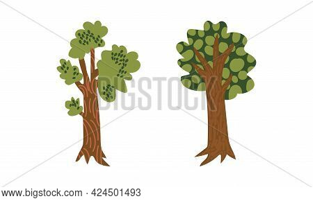 Green Tree With Lush Foliage As Park Zone Element Vector Set