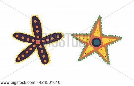 Starfish Or Sea Star As Asteroidea Marine Specie From Ocean Bottom Vector Set