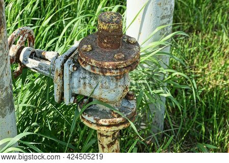 One Large Gray Iron Valve And A Yellow Gas Pipe Overgrown On A Green Grass In The Street