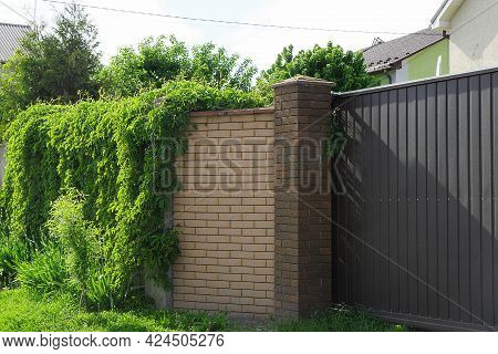Brown Brick Wall Of The Fence Overgrown With Green Vegetation And Part Of The Metal Gate On The Stre