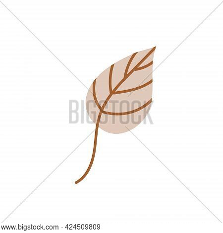 A Fallen Autumn Leaf Isolated On A White Background. Vector Illustration. Design Element For Autumn