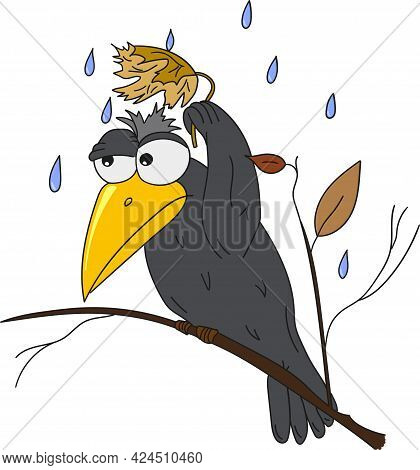 A Vector Cartoon Illustration Of Black Crows Sheltering From The Rain
