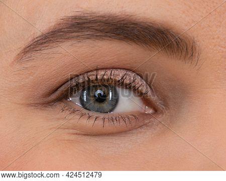 Female Eye. Eye Makeup. Arched Eyebrow And Natural Eye-shadow. Eyesight. Eyelash Extension.