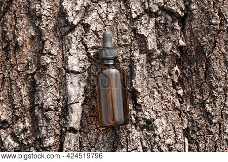 Serum Oil In Amber Glass Cosmetic Bottle On Tree Bark Top View. Anti Aging Serum With Collagen And P