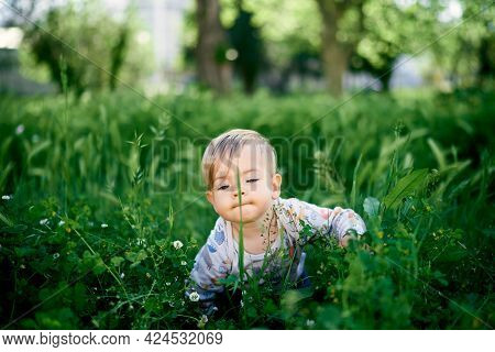 Kid Makes His Way Through The Tall Grass Among The Wildflowers