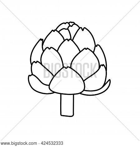 Artichoke. Vegetable Sketch. Thin Simple Outline Icon. Black Contour Line Vector. Doodle Hand Drawn