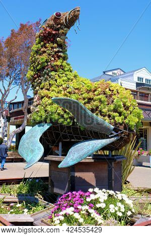 June 8, 2021 In San Francisco, Ca:  Sea Lion Art Sculpture Covered With Manicured Plants Taken At Th