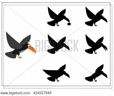 Game For Kids Find The Right Shadow Of A Flying Crow, Halloween. Vector Isolated On A White Backgrou