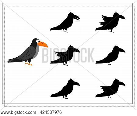 Game For Kids Find The Right Crow Shadow, Halloween. Vector Isolated On A White Background.