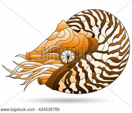 A Stained Glass-style Illustration With A Brown Nautilus Clam, An Animal, Isolated On A White Backgr