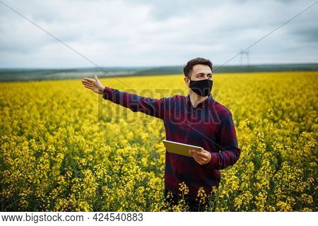 A Successful Farmer Shows The Rapeseed Crop. A Young Agronomist In A Black Protective Mask Checks A