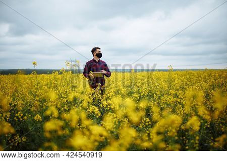 A Successful Farmer Checks The Rapeseed Crop. A Man Agronomist Stands In A Rapeseed Field With A Tab
