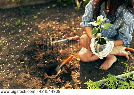 Horizontal Closeup Image Of A Gardener Female Working With A Trowel In The Garden To Growing New Pla