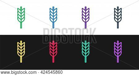 Set Line Cereals Set With Rice, Wheat, Corn, Oats, Rye, Barley Icon Isolated On Black And White Back
