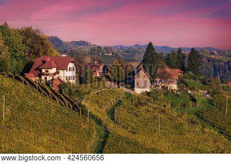 Beautiful Vineyards At Sunset Of Stajerska Slovenia, Wine Producing Area. View Of Green Vineyards, R