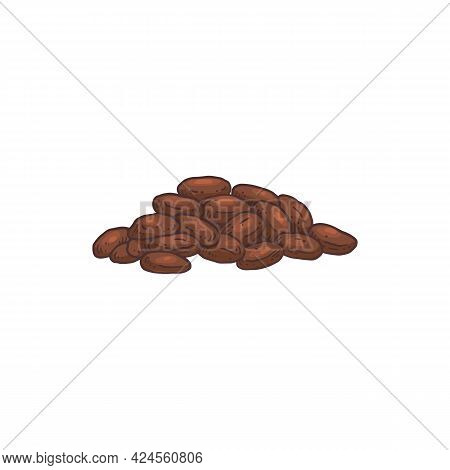 Heap Of Cocoa Fruit Seeds Hand Drawn Engraving Vector Illustration Isolated.