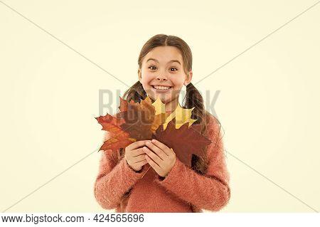 Little Girl Welcome Autumn Season. Small Girl Celebrating Fall. Find Inspiration In Nature. Inspirin
