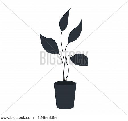 Pot With Houseplant Isolated At White Background. Vector Flowerpot Of Decorative Black Plant With Lo