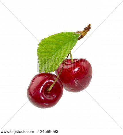Cherry Fruit On White Background. Sweet Ripe Cherry With Leaves Isolated.