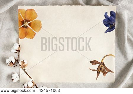 Cotton flower branch on a paper over a creased gray fabric background