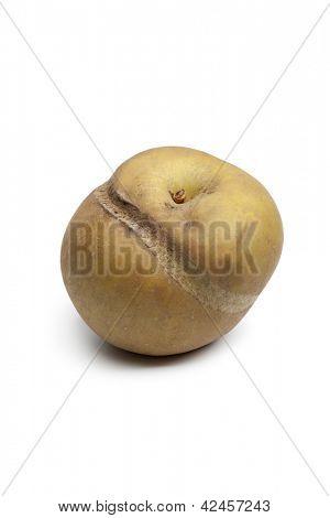 Single Patte de loupe apple on white background