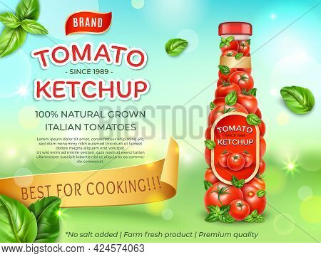 Realistic Detailed 3d Tomato Ketchup Italian Tomatoes Ads Banner Concept Poster Card. Vector