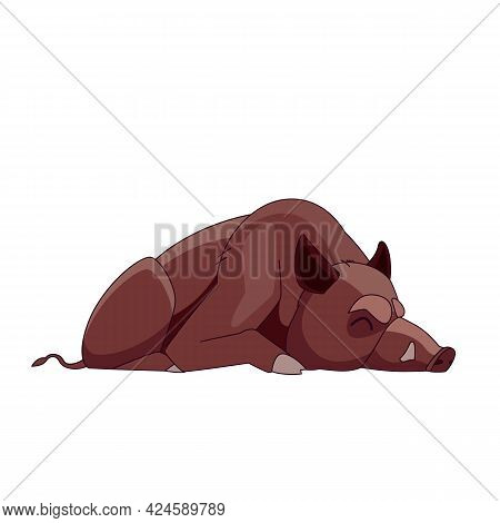 Wild Boar Sleeping Or Dead. Cartoon Character Of An Adult Mammal Animal. A Wild Forest Creature With
