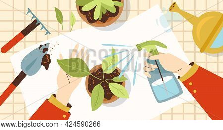 Houseplant Nursery And Care, Home Floristry Flat Vector Illustration.