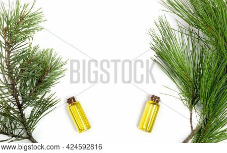 Aromatic Essential Cedar Oils In Small Glass Bottles With Cedar And Pine Branches On White.