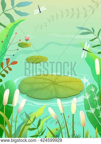 Pond, Swamp Or Lake Scenery Empty Background With Waterlily And Lily Plants Grass And Reeds. Colorfu