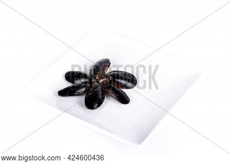 Group Of Half-opened Mussels Shell Fishes On White Background