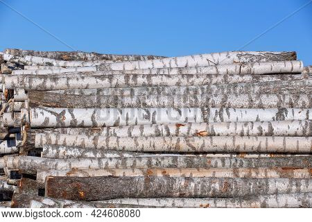 Stacked Birch Logs, Logging Product, Background, Texture