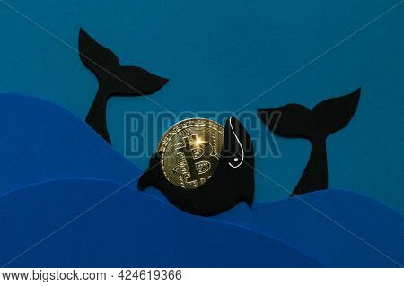Bitcoin Whale Concept. Large Holders Of Coin Manipulated Currency Valuations