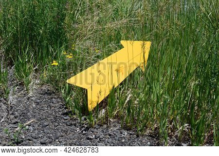 Yellow Direction Arrow Pointing From Asphalt Road Into Wild Grasses As Concept To Travel The Lesser